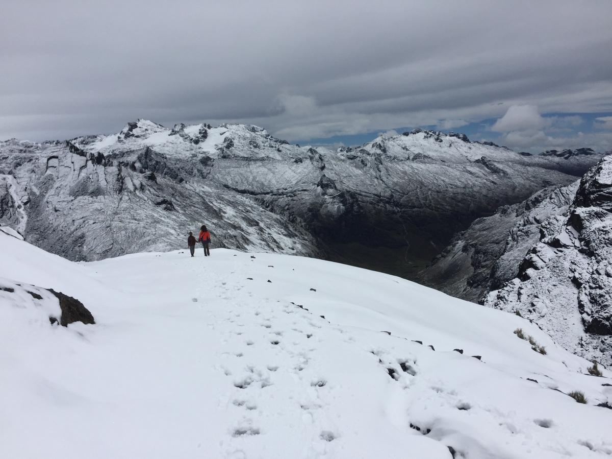 El Choro – fra sne tiljungle